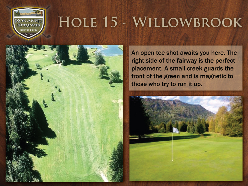 Hole-15---Willowbrook.jpg