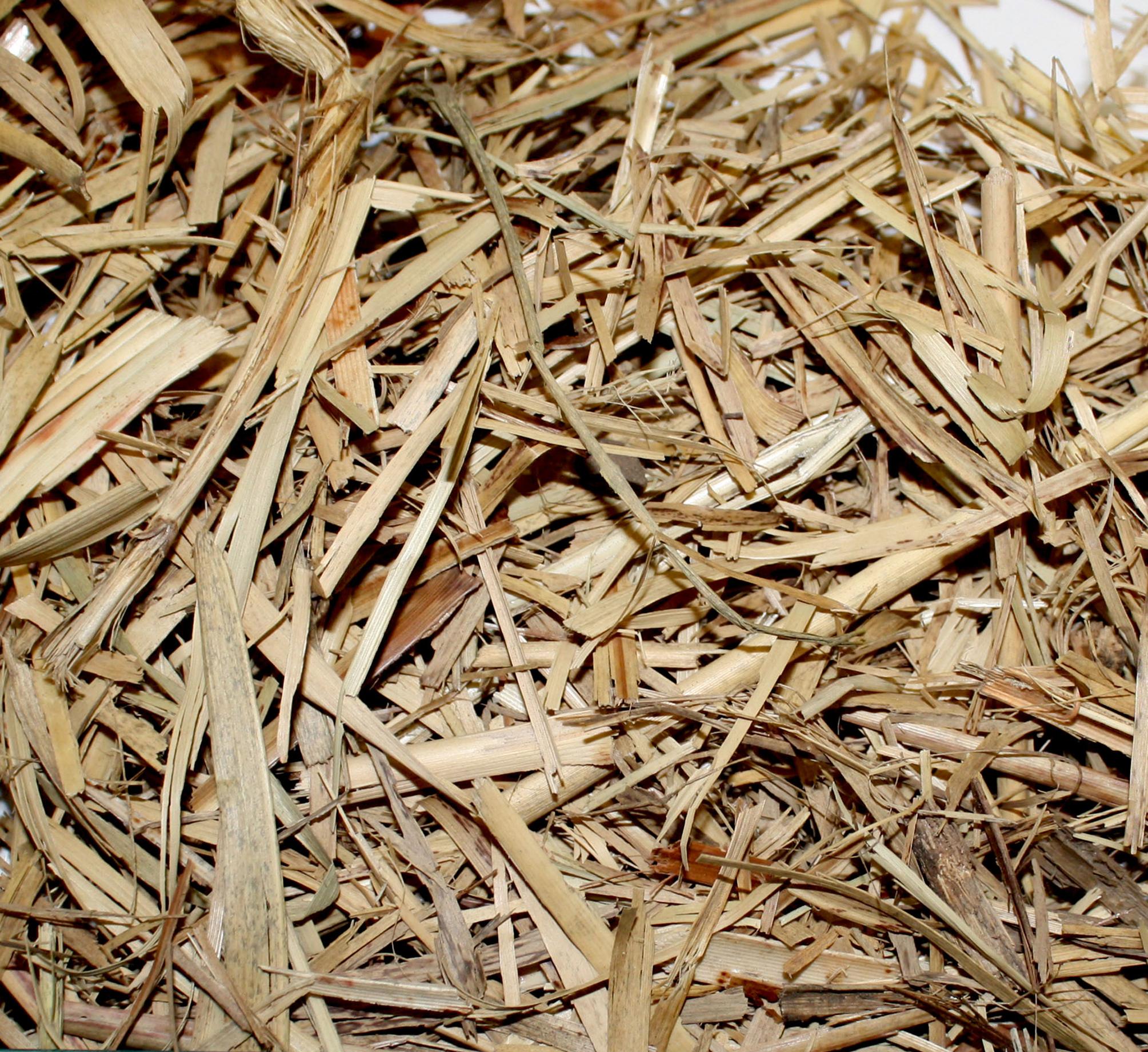 sugar-cane-mulch