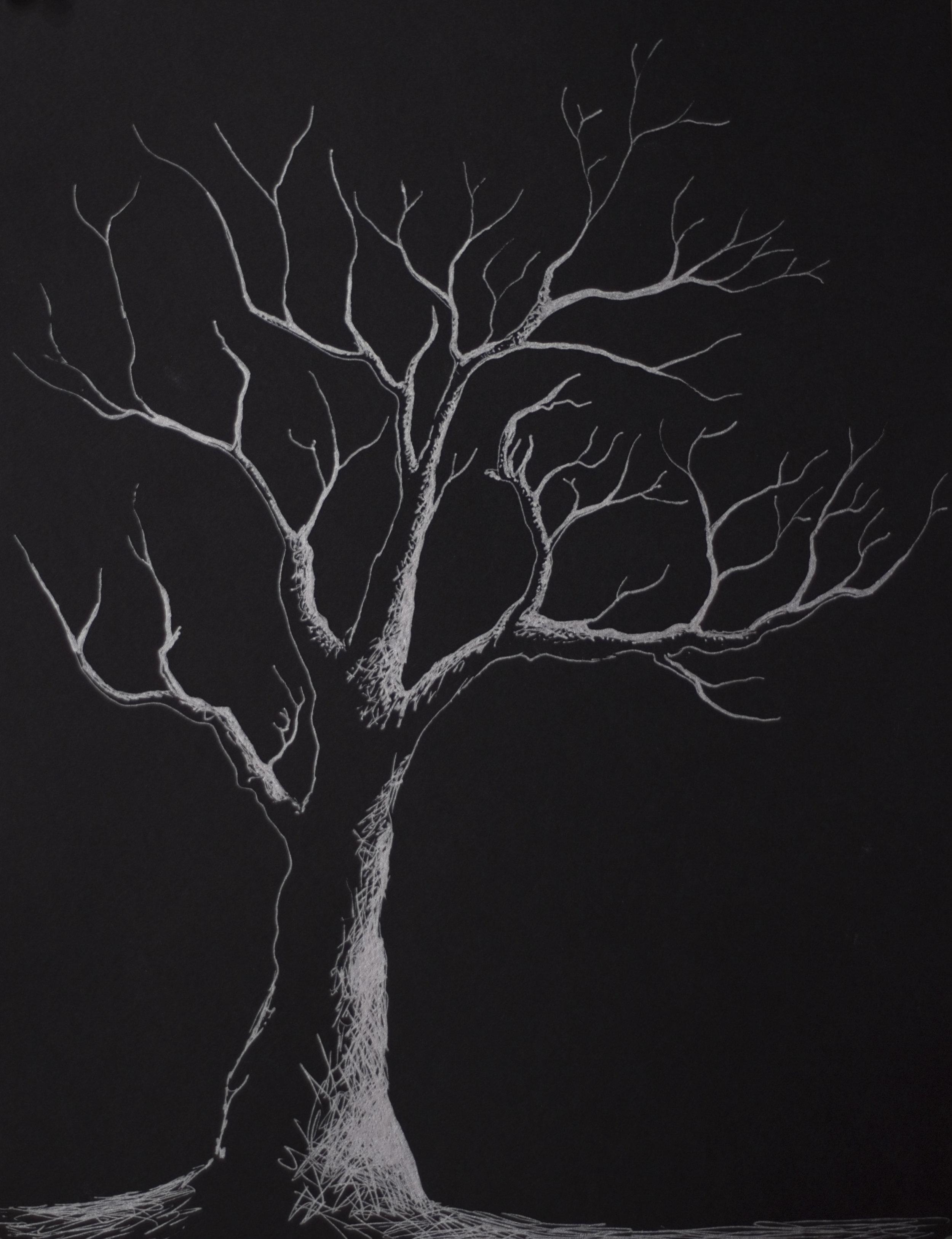 Tree • 12 x 9 • Silver pen • 150