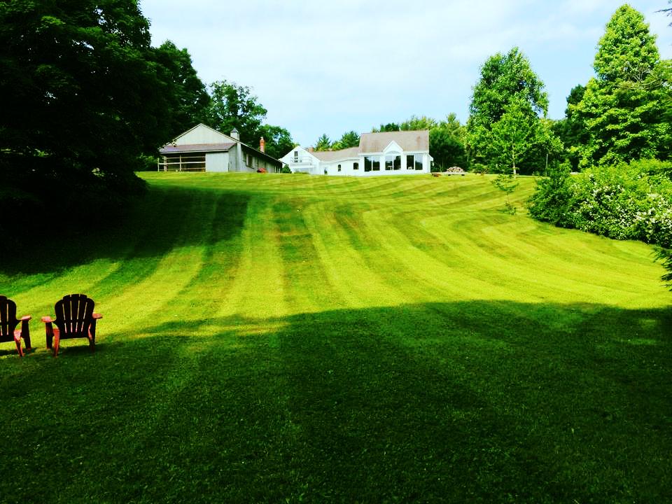 Freshly mowed lawn in Leverett