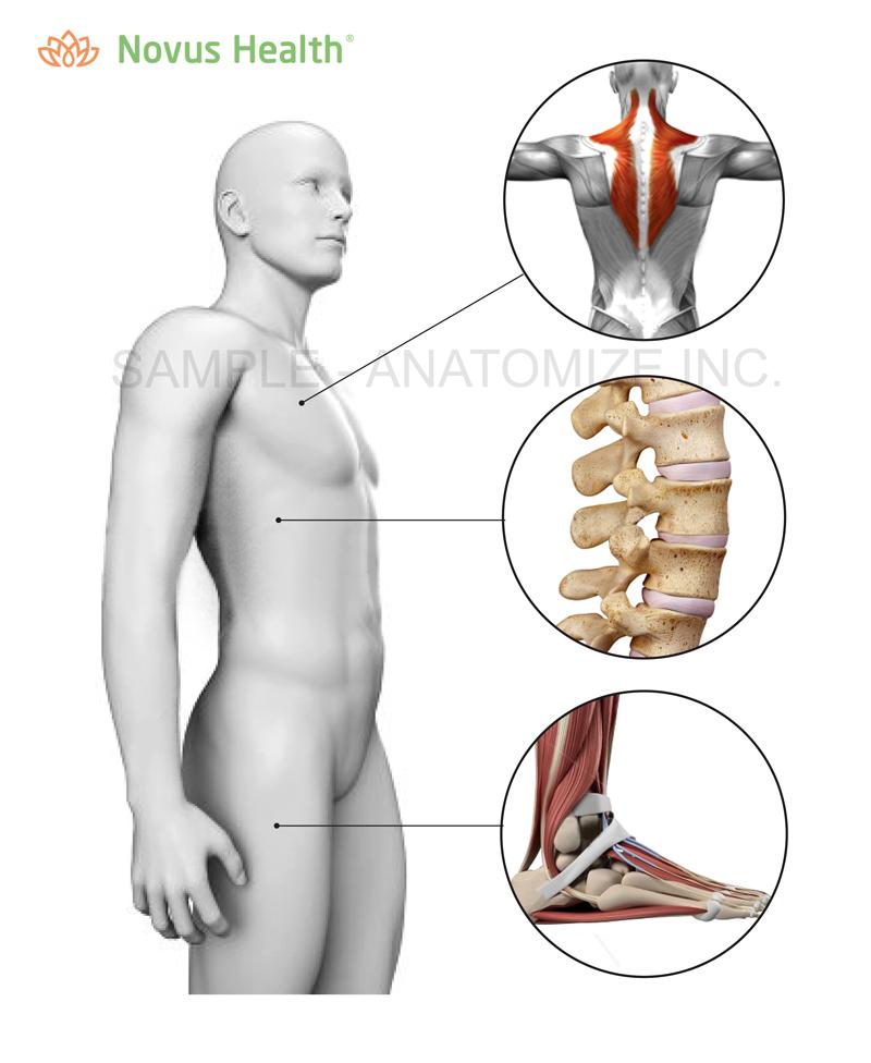 Anatomize_proposal_Symptom-checker-01_web.jpg