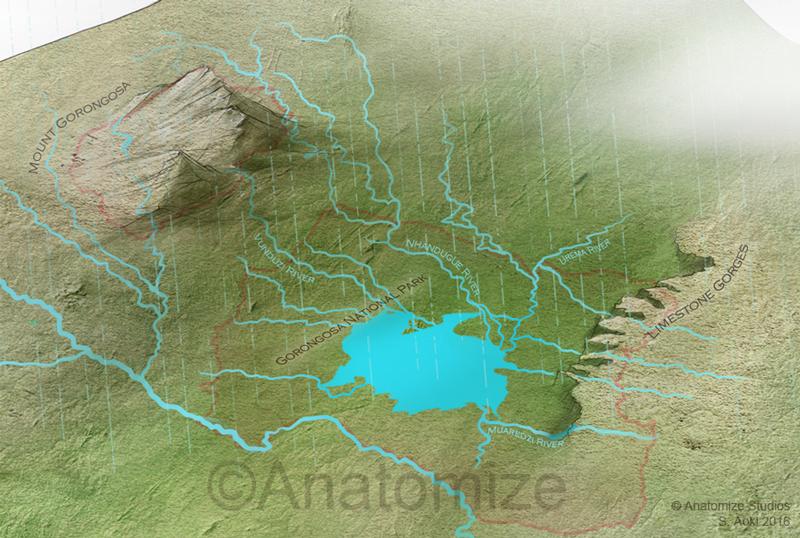 Mount Gorongosa - Water Cycle