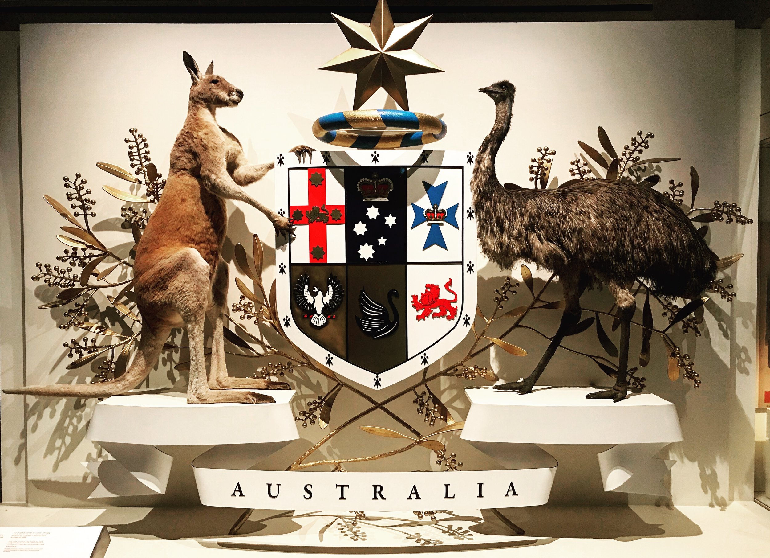 Australian coat of arms (at the Melbourne Museum)