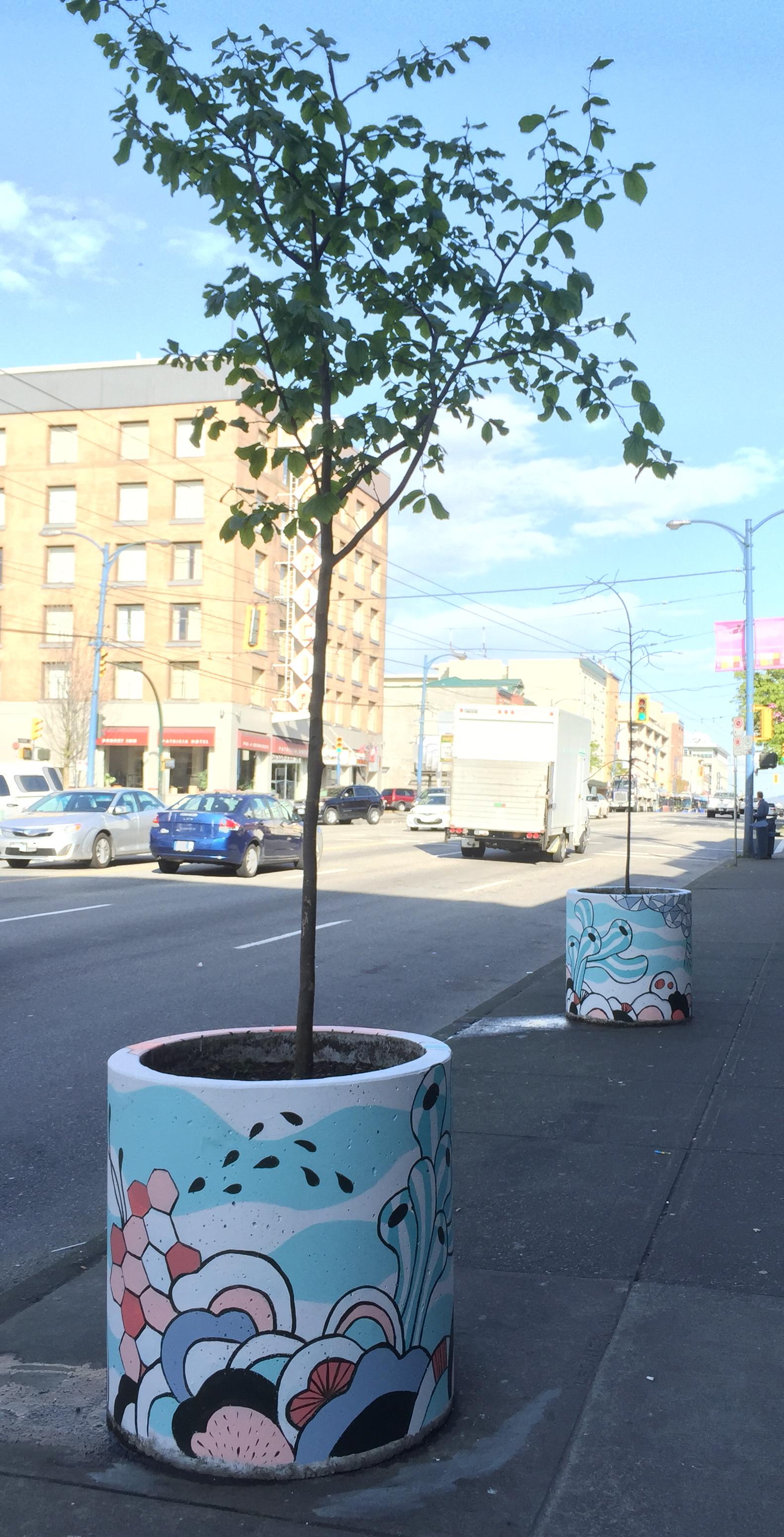 murals_planters_streetview