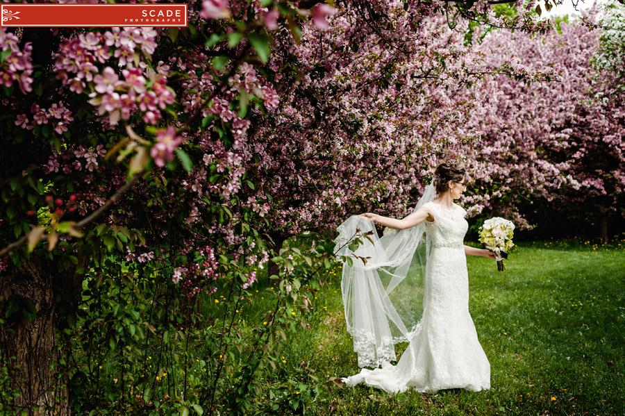 Spring Wedding Edmonton - Terry and Larissa - 036.JPG
