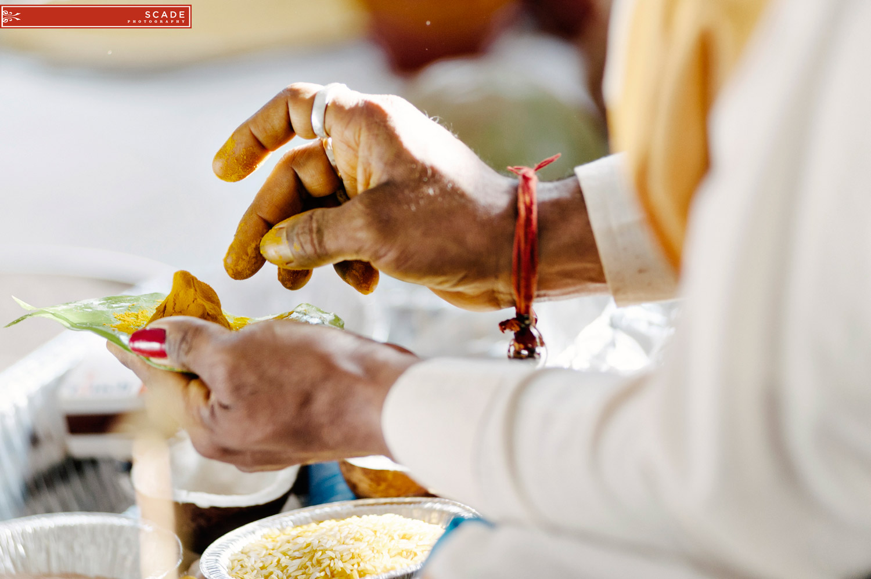 Edmonton Hindu Wedding - Sush and Allan - 02.JPG