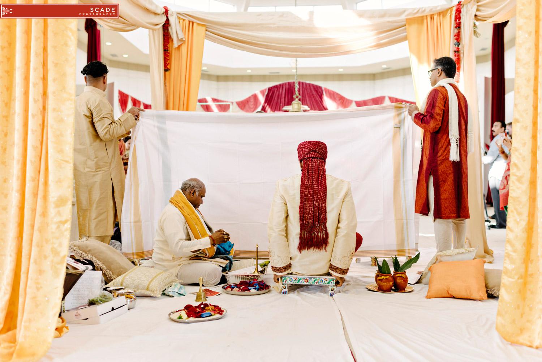 Edmonton Hindu Wedding - Sush and Allan - 15.JPG
