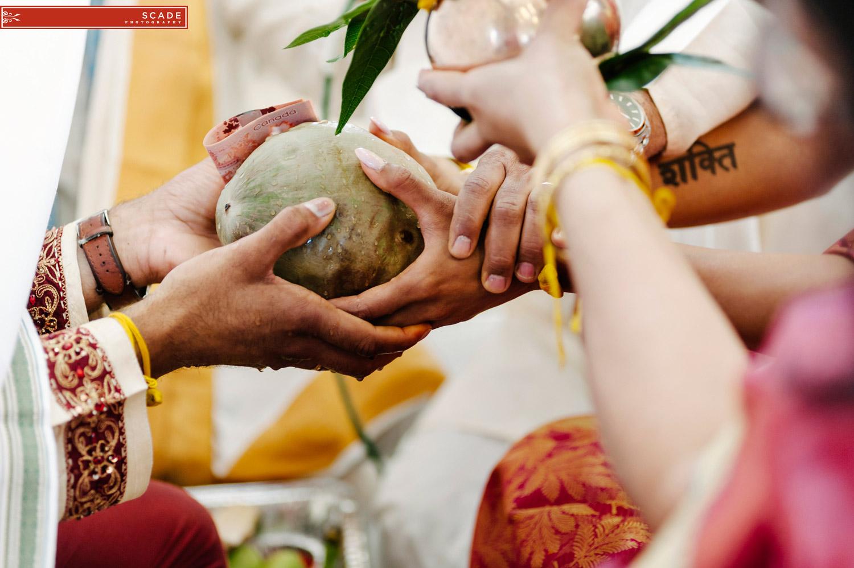 Edmonton Hindu Wedding - Sush and Allan - 17.JPG