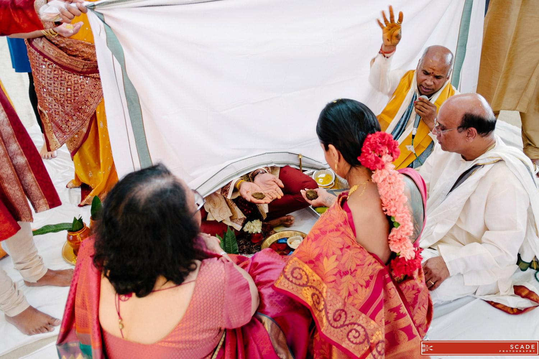 Edmonton Hindu Wedding - Sush and Allan - 18.JPG