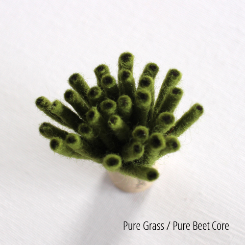 Pure Grass, Beet Core.JPG