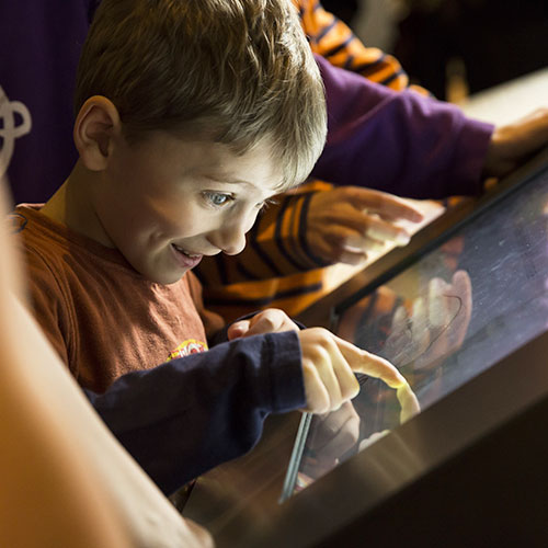 Get to grips with the physics of flight with our fun interactive exhibits