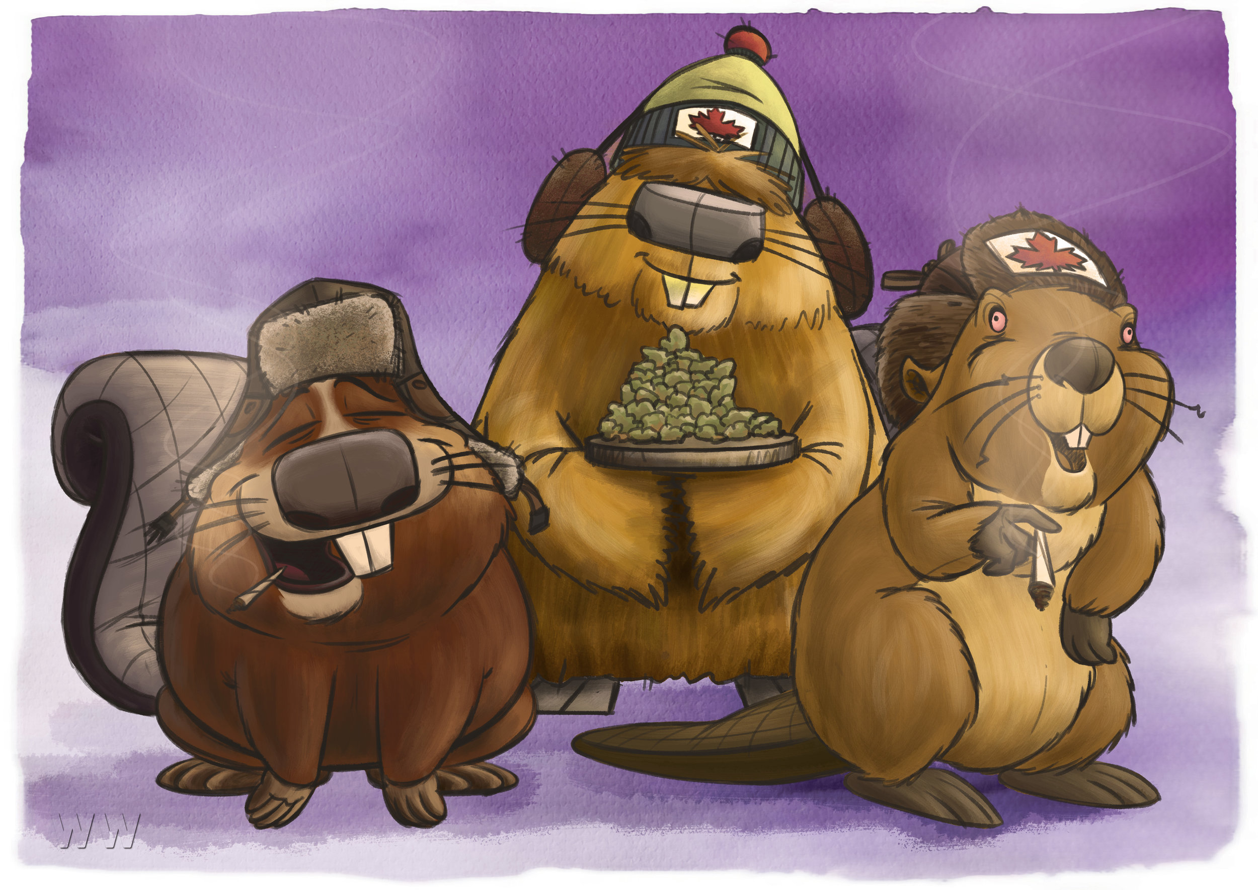 Canadian Beavers.jpg