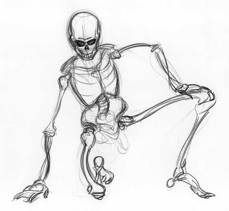 Skeleton-Male-01.jpg