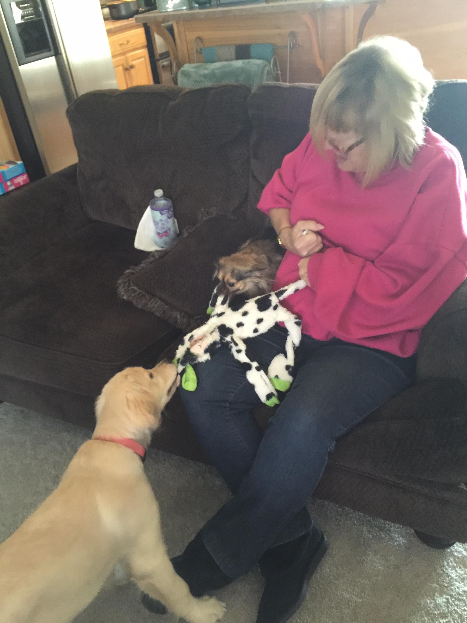 Liberty playing with Grandma and Jazman