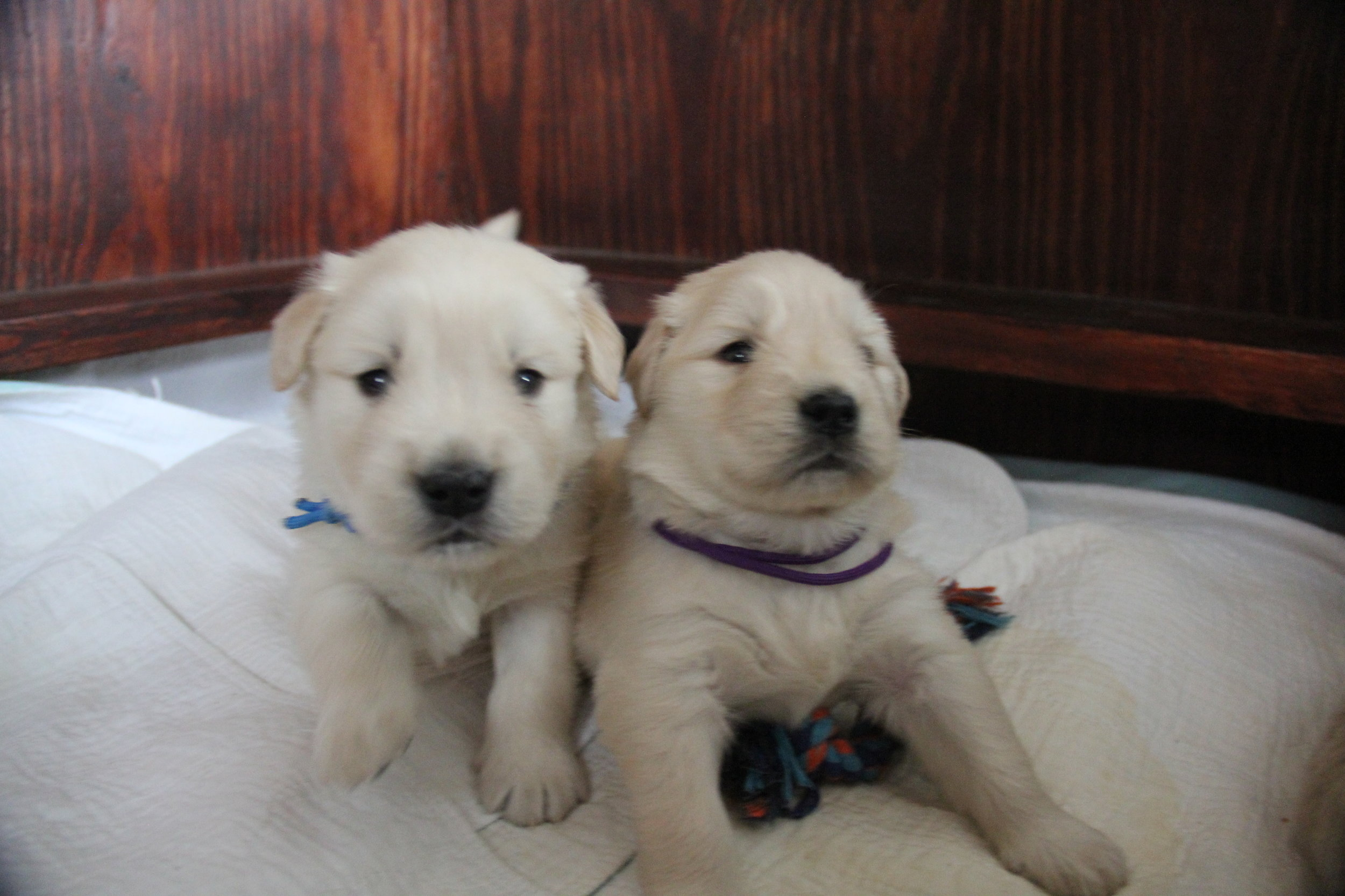 With her brother, MacDuff