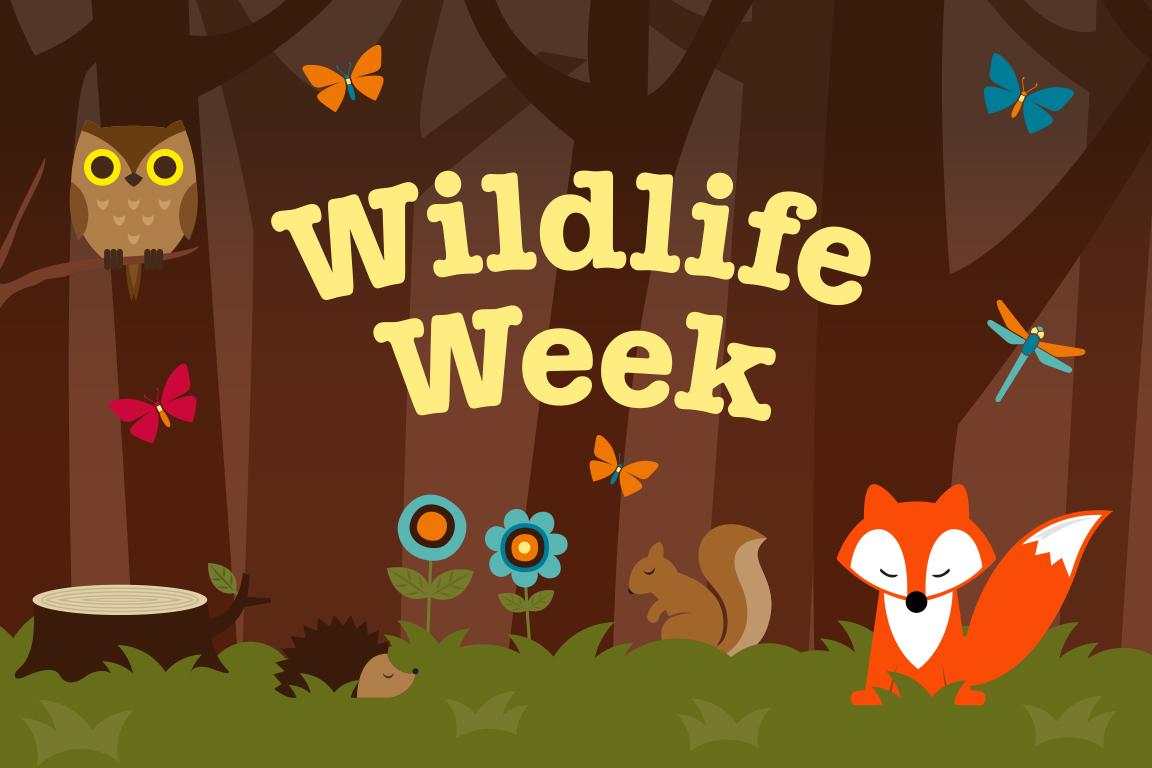 Wildlife_Week.jpg