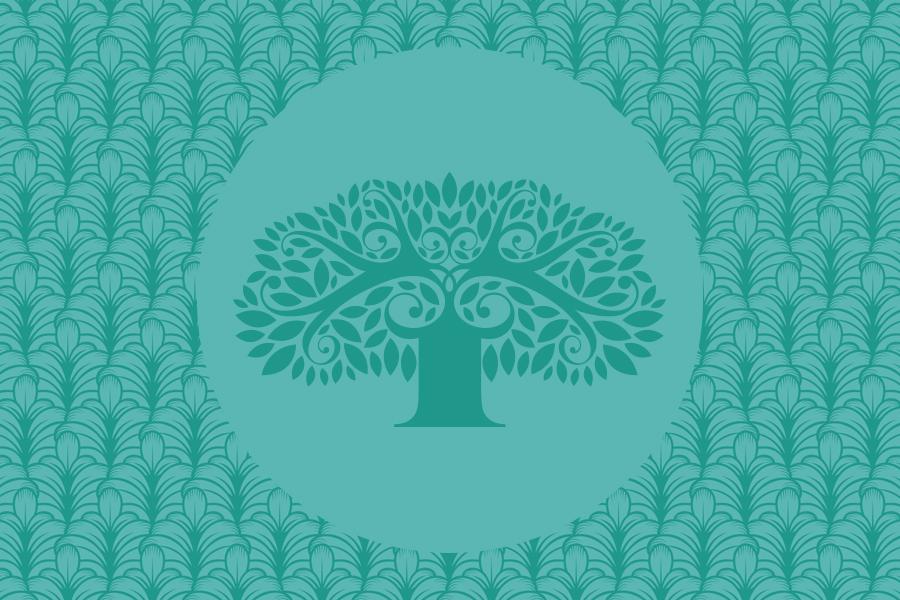 Banyan-Assets-5.jpg