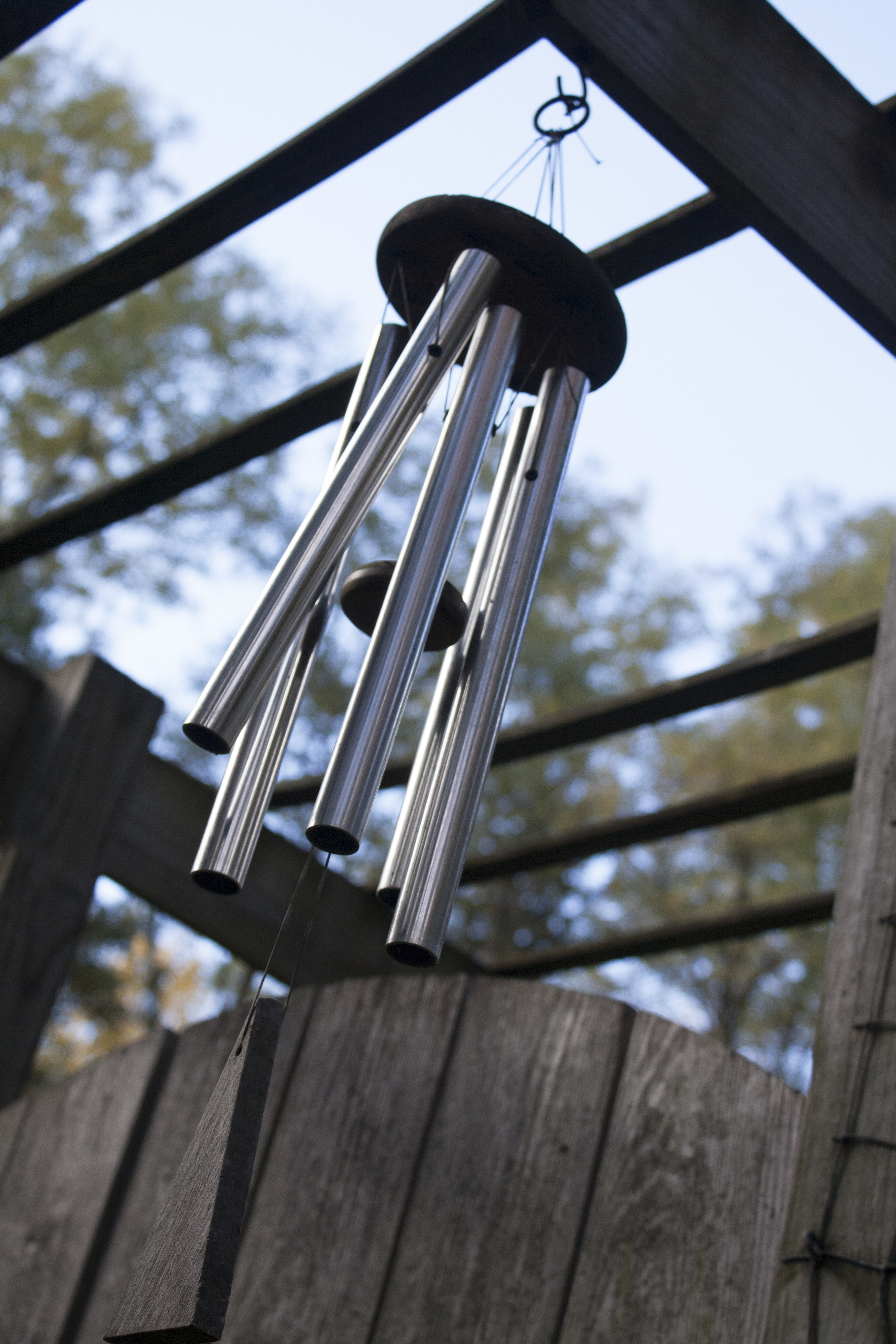 Chimes singing softly at the entrance made us feel right at home.