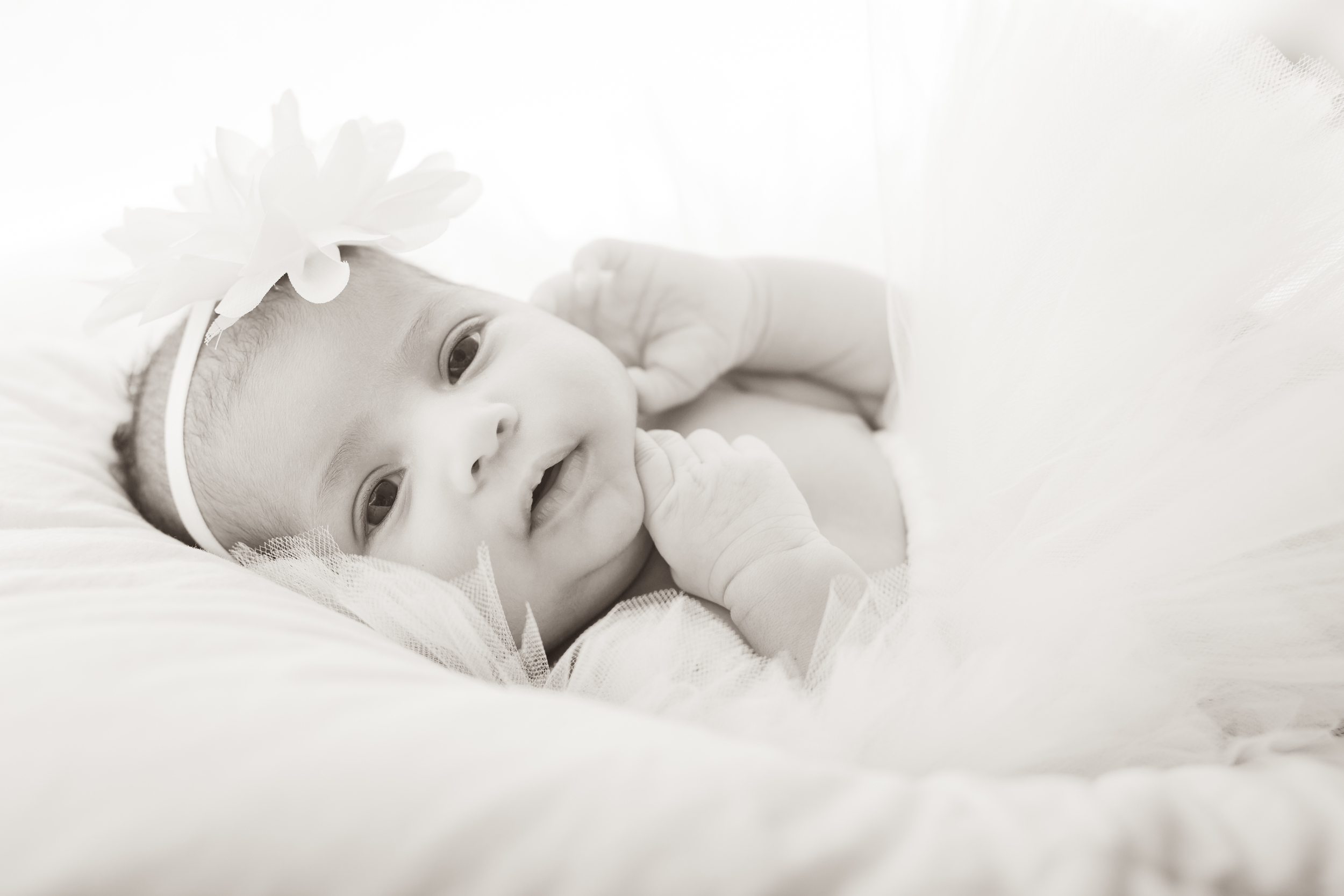 Newborn-8534-2.jpg