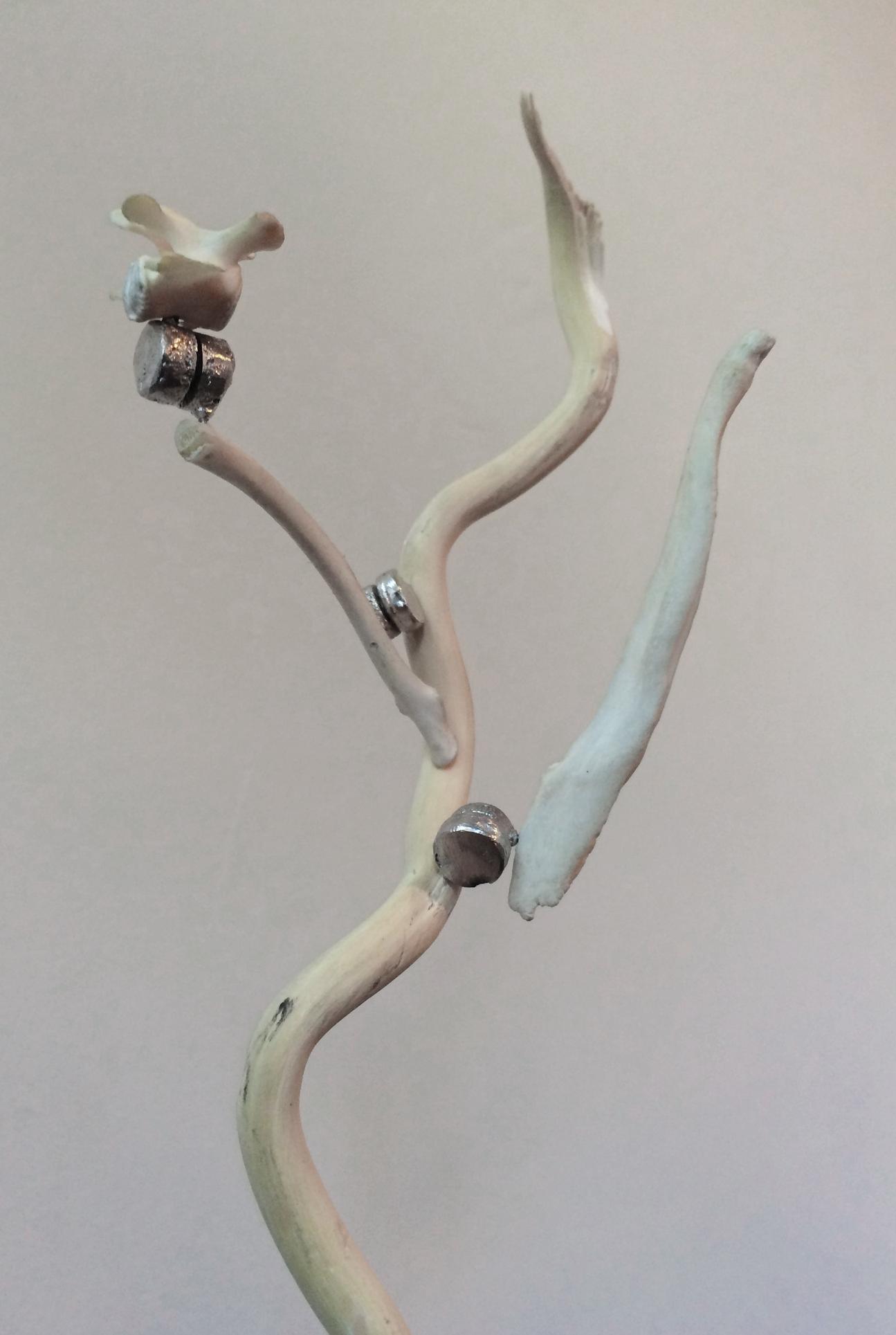 BUTTON-TAP JOINT Bismuth, neodymium, corkscrew willow, bone