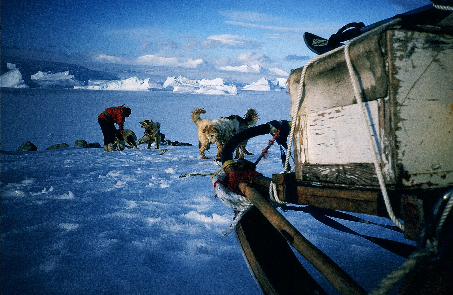 I was fortunate to be part of an end of an era - dogs in Antarctica