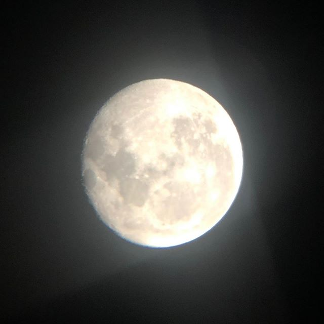 Have been moon gazing with @maddy.abrahams this week. Here's a shot through the telescope from this morning as we approach the 50th anniversary of the moon landing on the 20th July.  How amazing it must be to be there looking down on Earth...Our Home... . . . #moonlanding  #apollo1150thanniversary #spacerace #nasa #apollo11 #neilarmstrong #buzzaldrin #michaelcollins . Listen to the brilliant podcast #13minutestothemoon to find out more about this amazing human achievement . #apollo11anniversary #50yearson