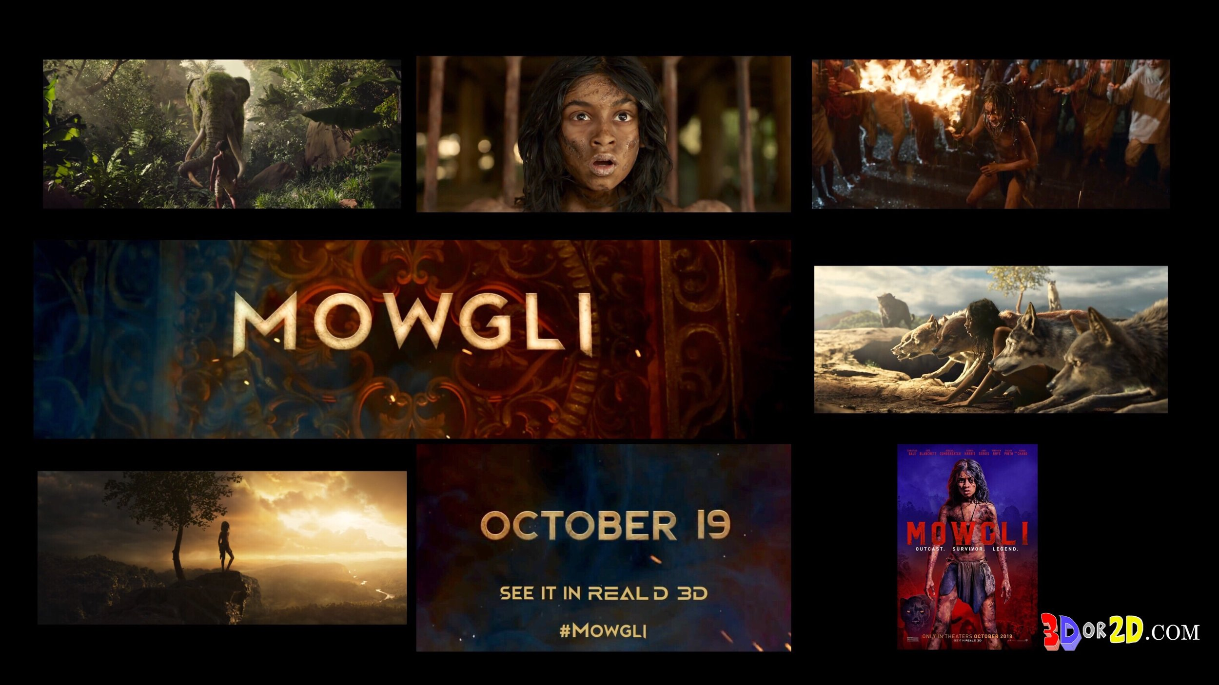 Photo collage of screen grabs from the Trailer