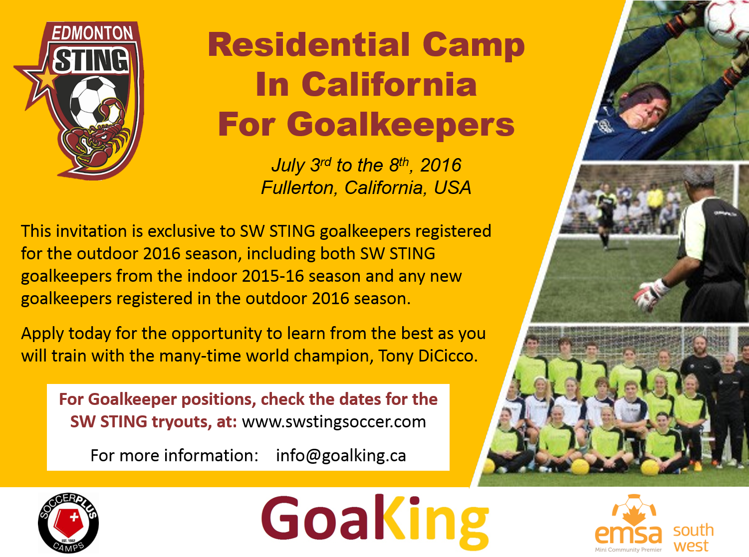 GOALKING is organizing an international trip with youth goalkeeper members of the SW STING Soccer Club, to Fullerton, California, to attend the residential camp of world-class goalkeeper and coach Tony DiCiccio.  In this camp, SW STING goalkeepers will learn and train in the field and classroom from July 3rd to the 8th.  This is only for SW STING goalkeepers.  Two programs will be offered: the Performance Program and the NTC Program.  The Performance Program is an advanced sophisticated training for goalkeepers 10 to 22 years old who have the desire to increase their knowledge in all the technical and tactical aspects of the goalkeeping position as part of their yearly development as goalkeepers, whereas the NTC program is a high-level functional training environment for top goalkeepers 15 to 22 years of age with aspirations of playing in college or beyond. For more information please write to:  info@goalking.ca  .