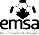 Three Star Endorsed GOALKING Goalkeeper Academy