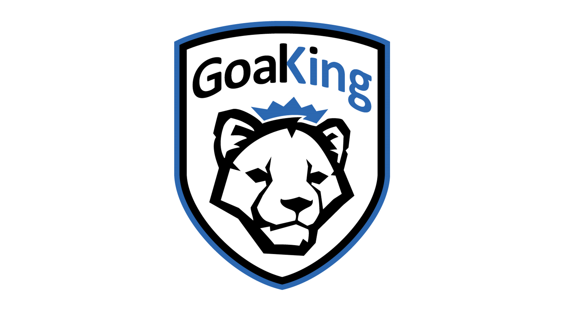 GOALKING Junior Stars - For youth players 10 to 12 years old