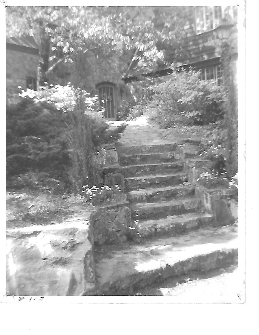 Piney bw steps.jpeg