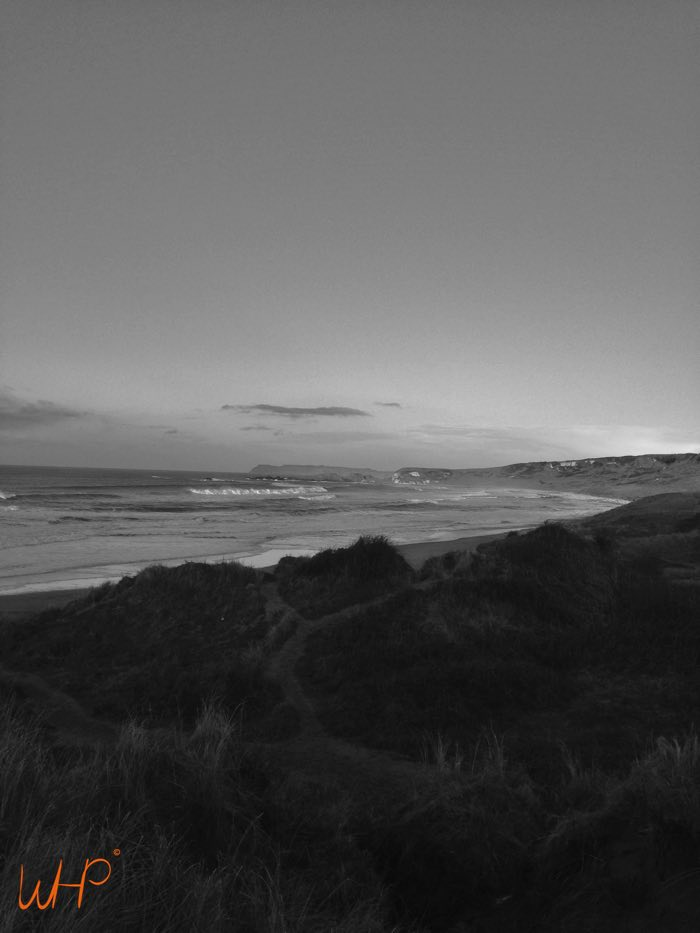 february north coast 9.jpg