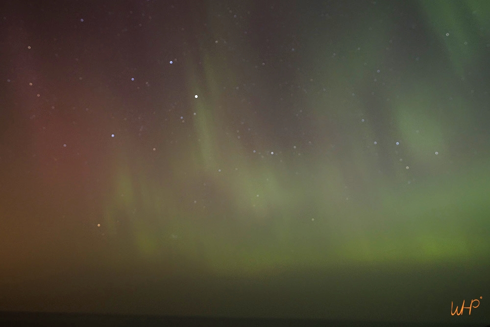 aurora-alive.jpg