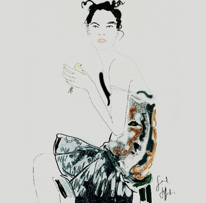 Paradigms of Dress - An Illustrative Intervention