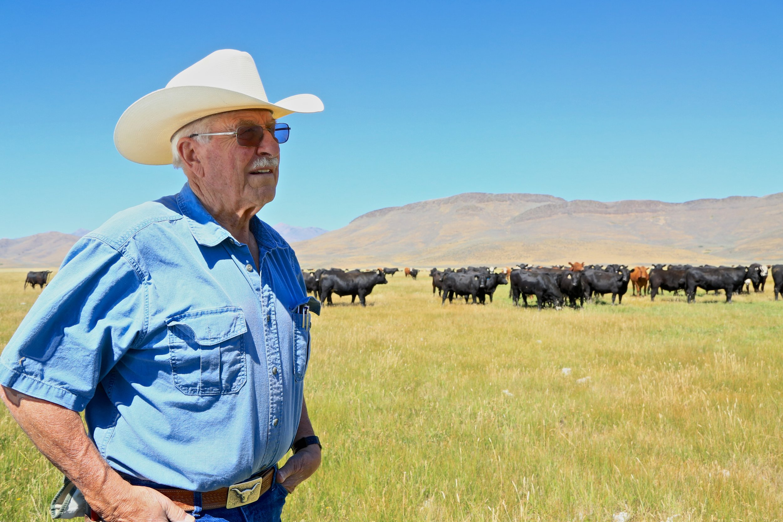 Protecting working ranches and farms
