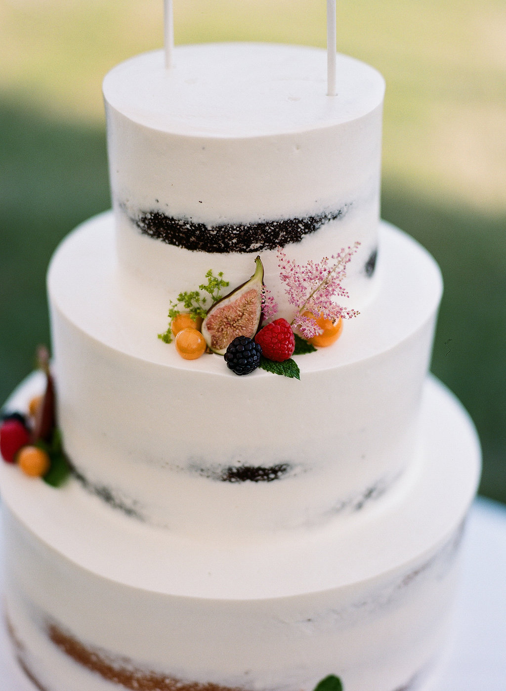 Cameron-Powel-Wes-Mize-wedding-20160618-470.jpg