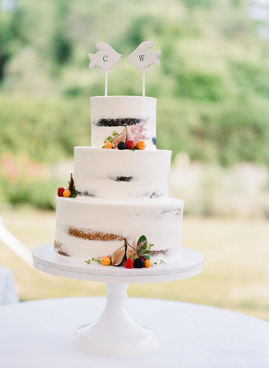 Cameron-Powel-Wes-Mize-wedding-20160618-469.jpg