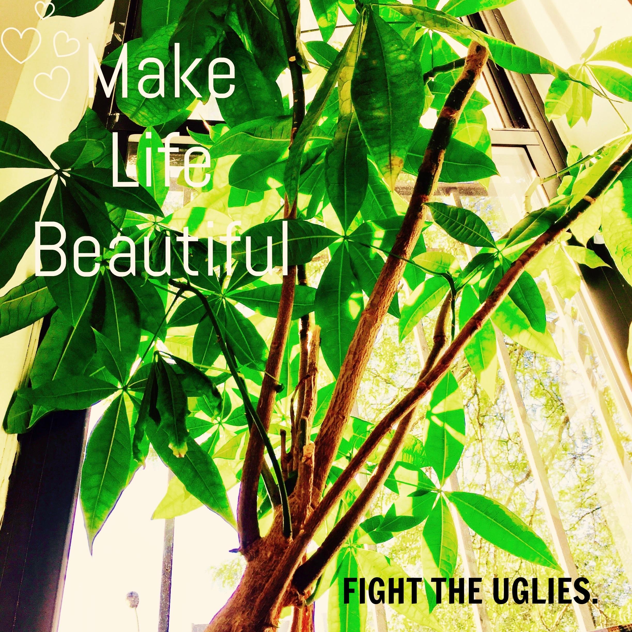Photo$TreePlant.jpg