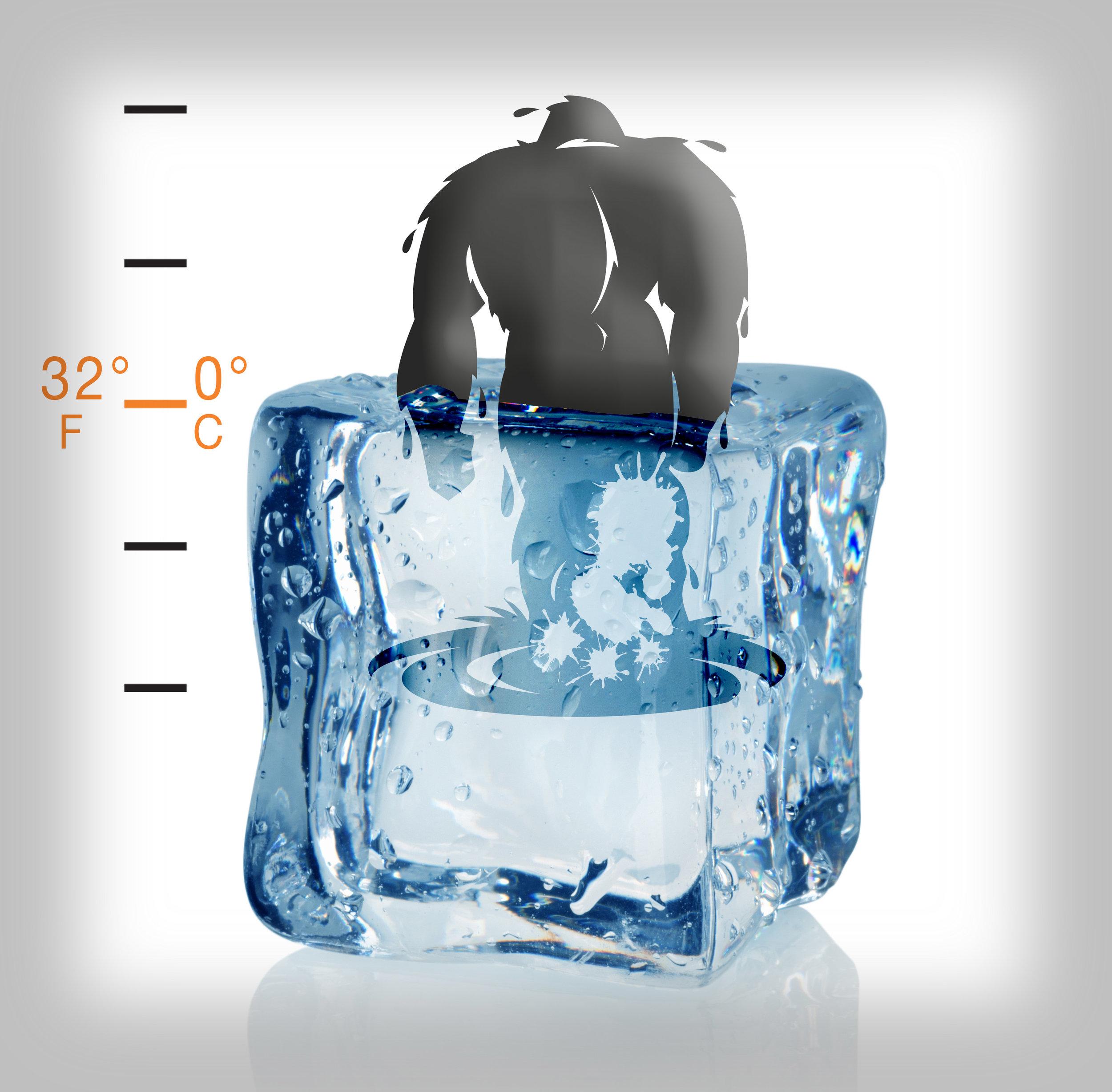 FreezingBIGFOOTSq.jpg