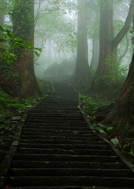 Stone Steps at Mt. Hoguro, Japan