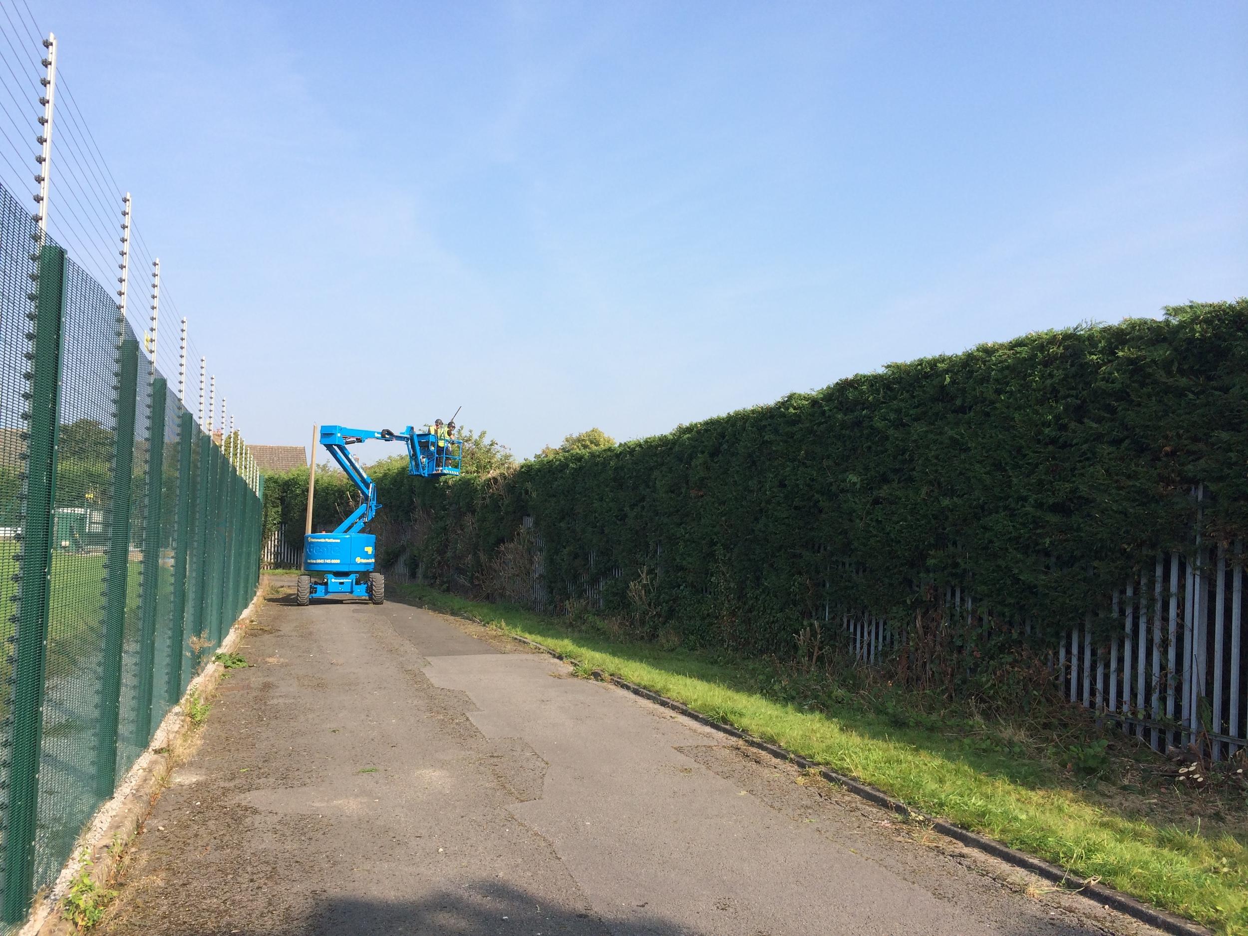 Arbortec Tree Surgeons Hedge Cutting Bolton