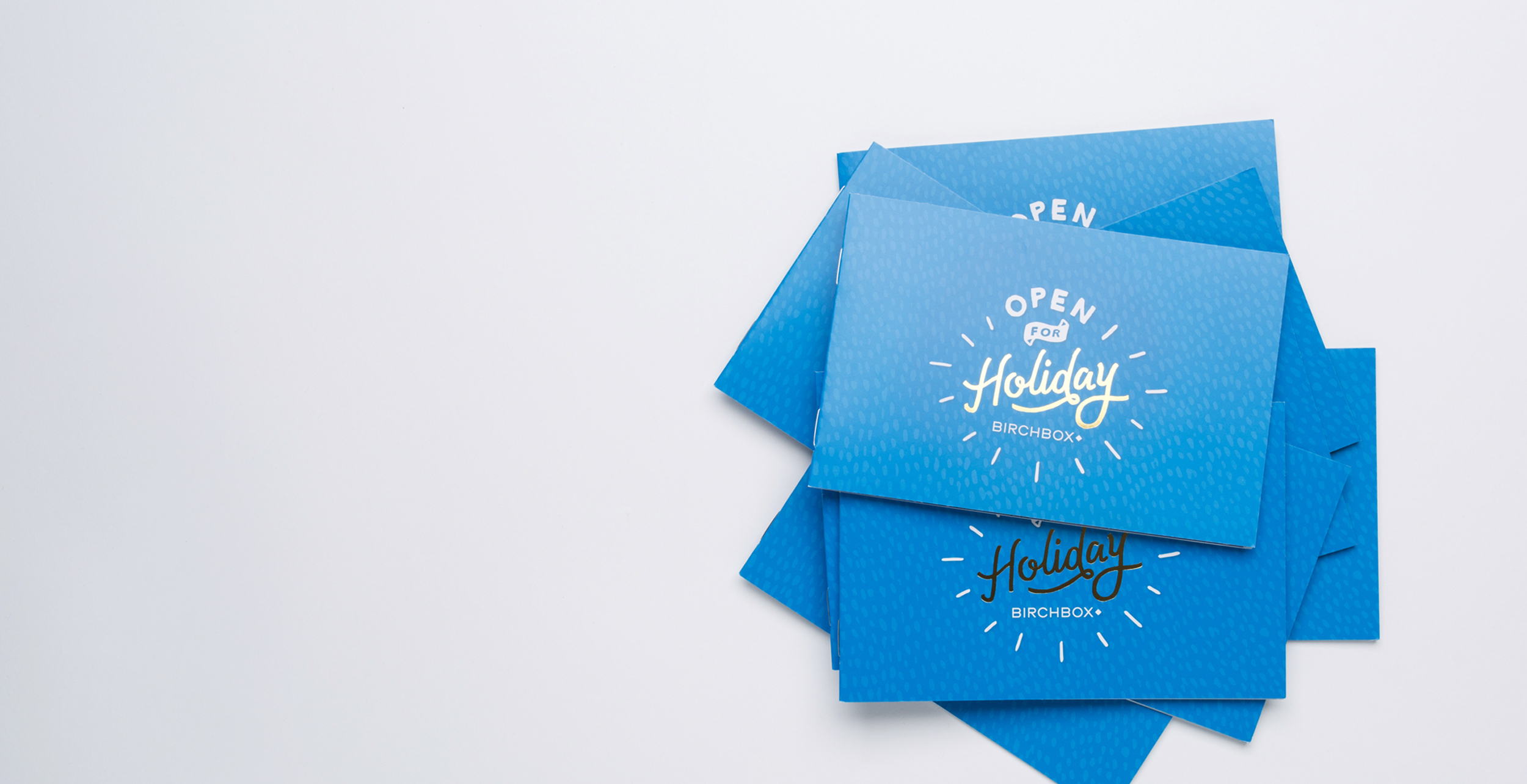 Holiday2014_Booklet_2500x1284.jpg