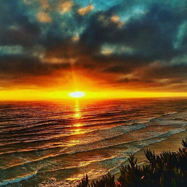 Let the sunshine make it's way to wherever you may be spending the holiday weekend. Always keeping it rad here in Encinitas. 📸sick shot @silziller  #encinitas #republicofencinitas #leucadia #cardiffbythesea #northcounty #ilovewherewelive #happy4thofjuly