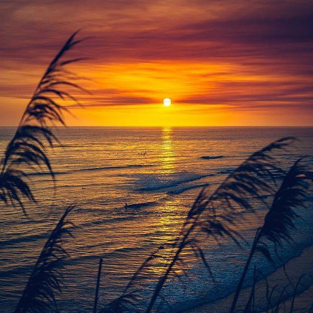 """If you're not barefoot, then you're overdressed."" Starting to look a lot like Summer. Go get it. sick📸kodyak_eyeland  #encinitas #leucadia #cardiffbythesea #northcountysd #sunset #summer #sunshine #ilovewherewelive #barefoot #republicofencinitas #summerlovin"