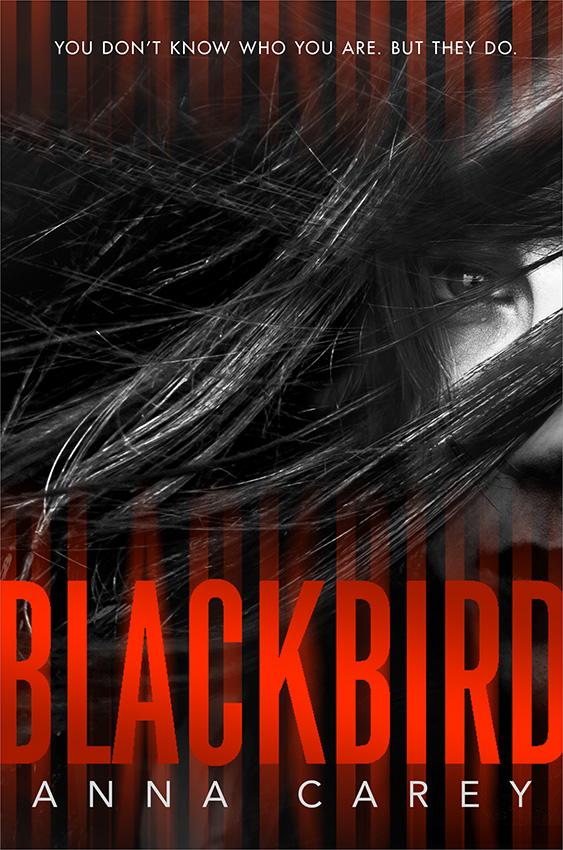 Blackbird_4-2