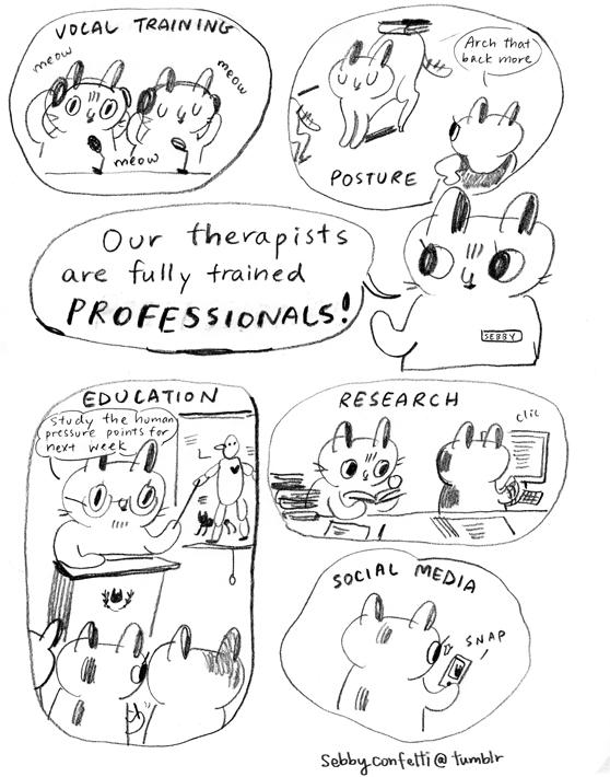 cattherapist02.jpg