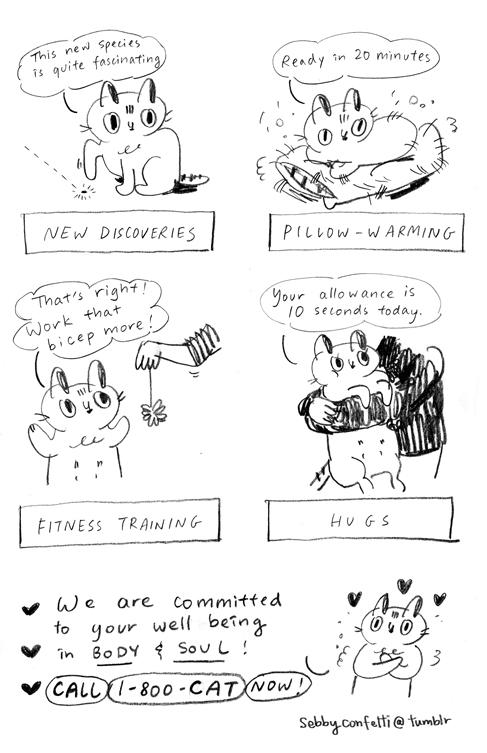 cattherapist_04.jpg