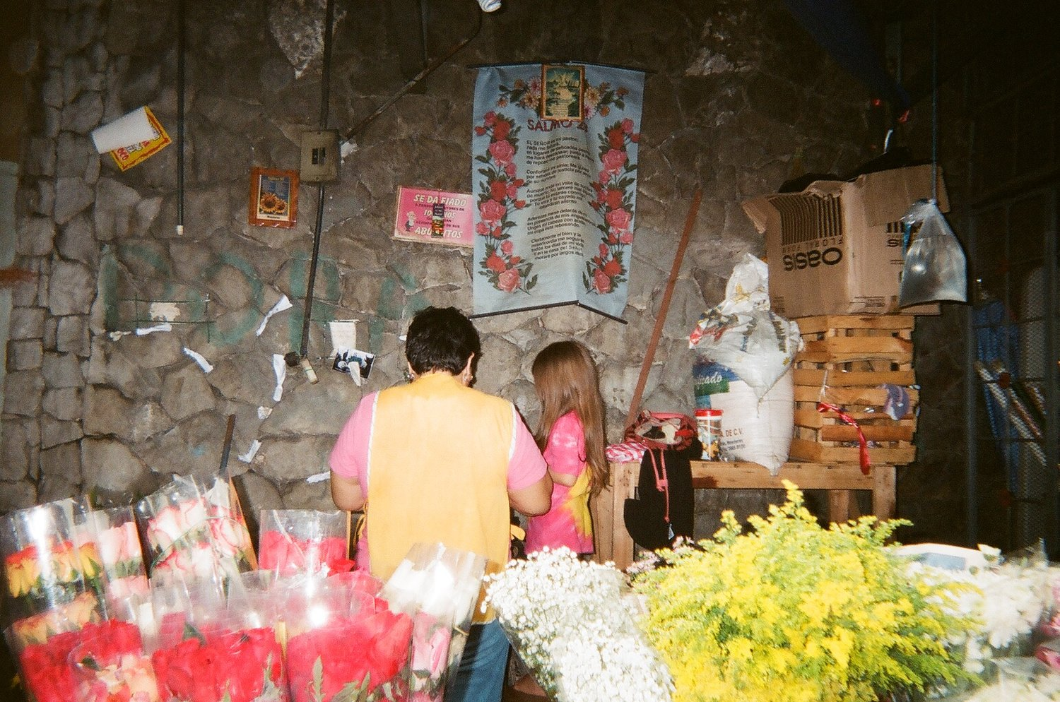 Alx and Anais   Disposable Team, San Pedro Sula