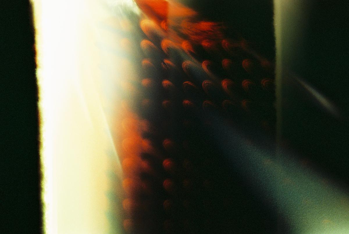 leah640-022.jpg
