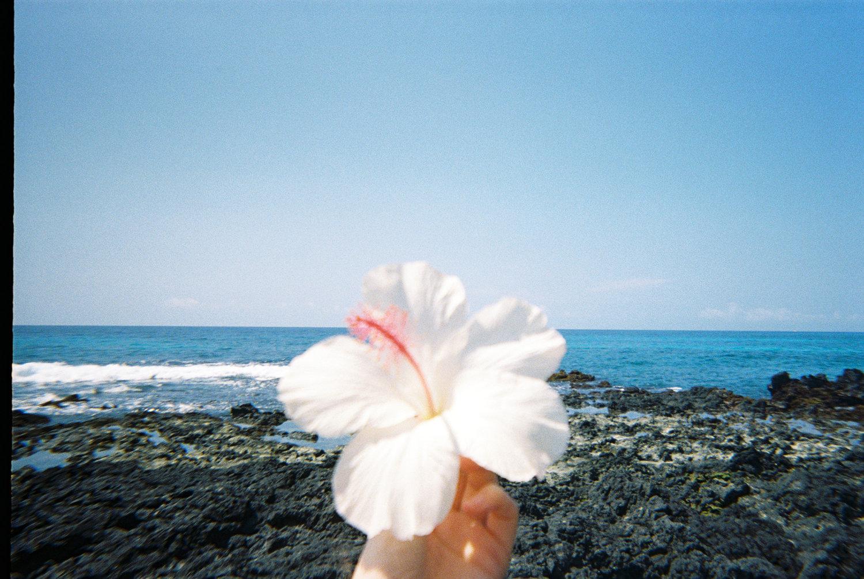 Playlist: Big Island